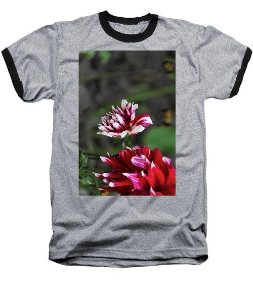 Dancing Dahlia Baseball T-Shirt