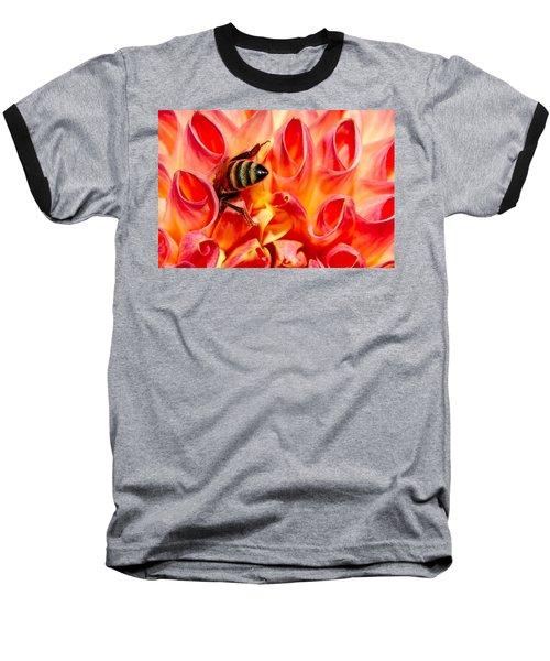 Deep Dive Baseball T-Shirt