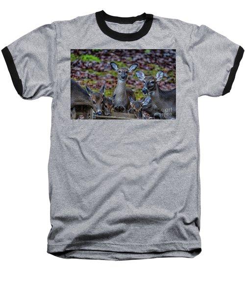Deer Gathering Baseball T-Shirt