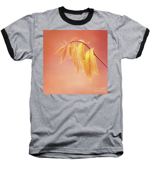 Delightful Baby Chestnut Leaves Baseball T-Shirt