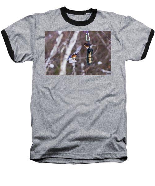 Docking Bluebird Baseball T-Shirt