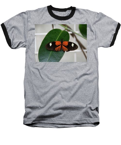 Doris Longwing On Leaf Baseball T-Shirt