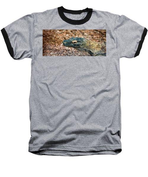 Dragon With No Fire Baseball T-Shirt