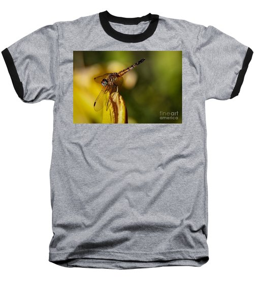 Dragonfly In The Limelight Baseball T-Shirt