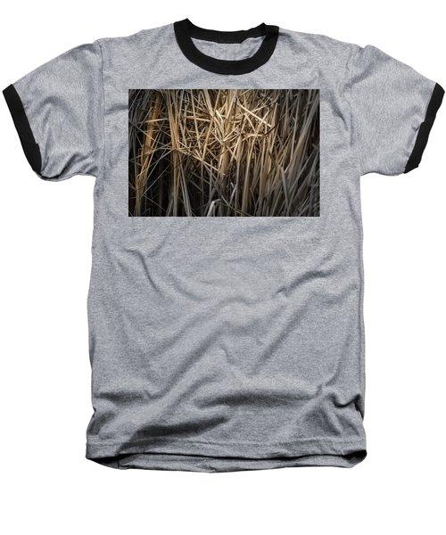 Dried Wild Grass II Baseball T-Shirt