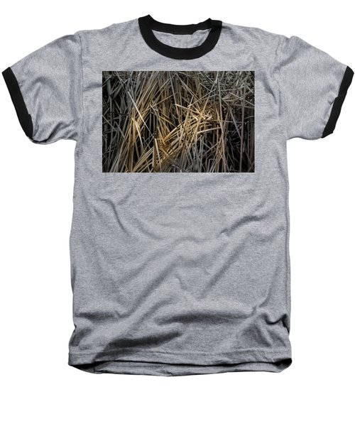 Dried Wild Grass IIi Baseball T-Shirt
