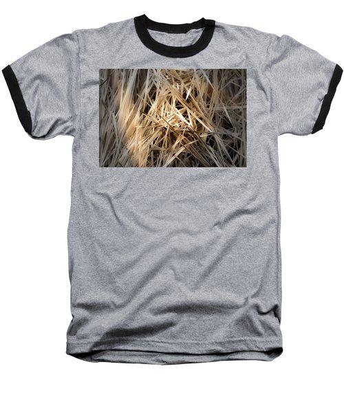 Dried Wild Grass I Baseball T-Shirt