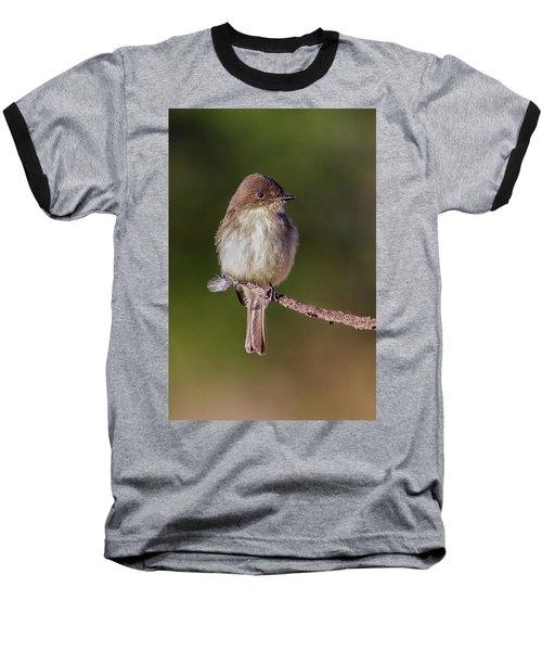 Eastern Pheobe Baseball T-Shirt