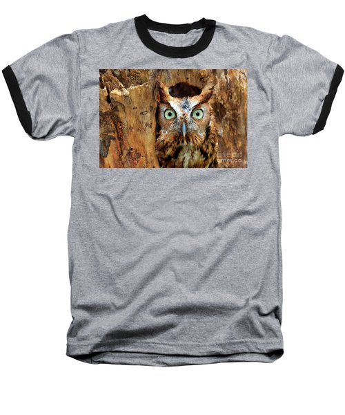 Eastern Screech Owl Perched In A Hole In A Tree Baseball T-Shirt