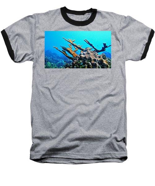 Elkhorn Baseball T-Shirt