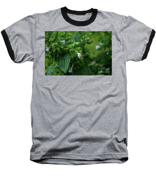 Euphrasia Baseball T-Shirt