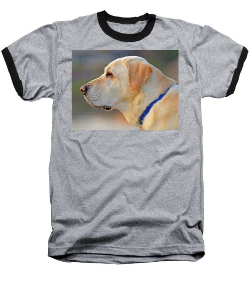 Faithful Baseball T-Shirt