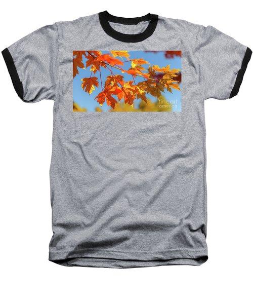 Fall Foliage Baseball T-Shirt