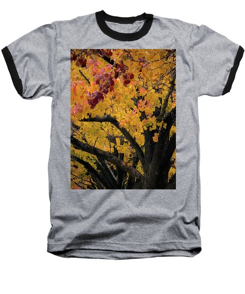 Fall In Carlyle Baseball T-Shirt
