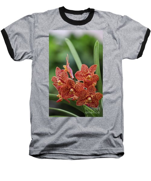 Family Of Orange Spotted Orchids Baseball T-Shirt