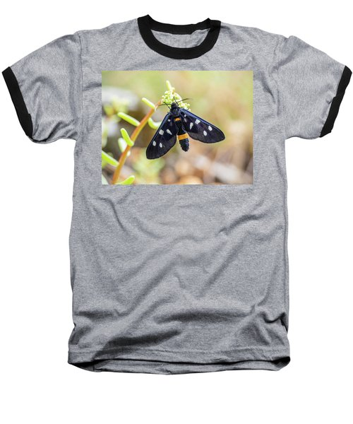 Fegea - Amata Phegea -black Insect With White Spots And Yellow Details Baseball T-Shirt