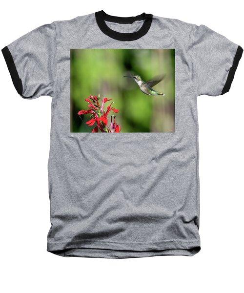 Female Ruby-throated Hummingbird Dsb0320 Baseball T-Shirt
