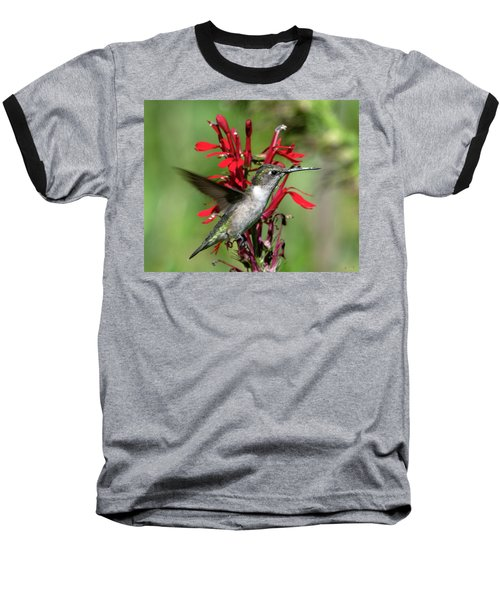 Female Ruby-throated Hummingbird Dsb0325 Baseball T-Shirt