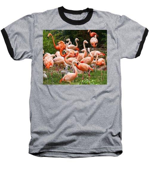 Flamingos Outdoors Baseball T-Shirt