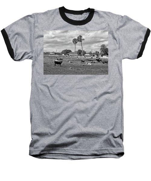 Florida Farmscape Baseball T-Shirt
