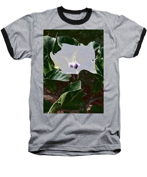 Baseball T-Shirt featuring the photograph Flower And Fly by Judy Kennedy