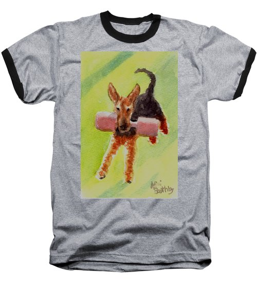 Flying Dale Baseball T-Shirt