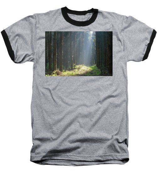 Baseball T-Shirt featuring the photograph Forrest And Sun by Anjo Ten Kate
