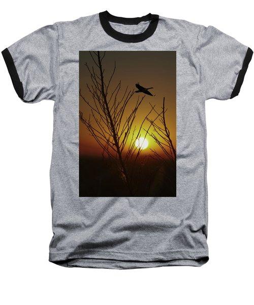 Fowl Morning Baseball T-Shirt