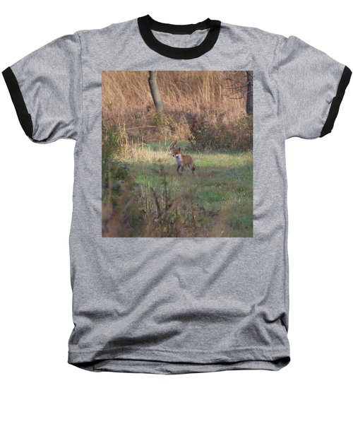 Fox On Prowl Baseball T-Shirt