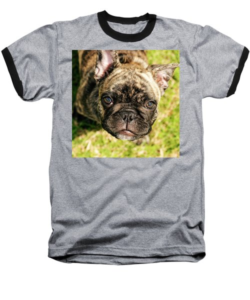 French Bull Dog Baseball T-Shirt