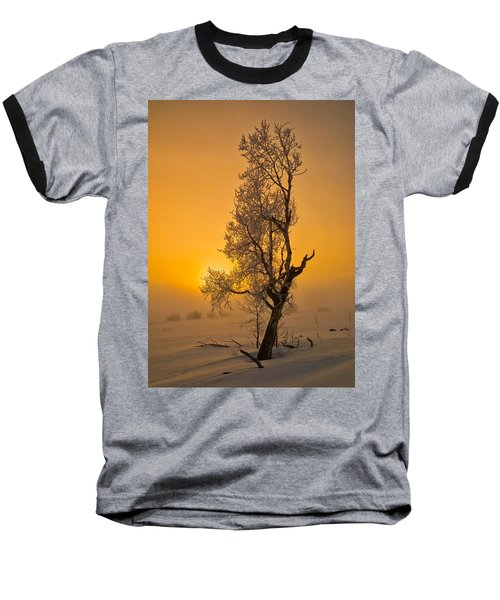 Frosted Tree Baseball T-Shirt