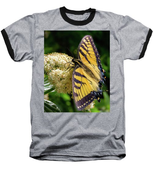 Fuzzy Butterfly Baseball T-Shirt