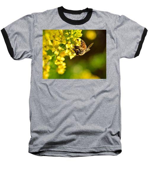 Gathering Pollen Baseball T-Shirt