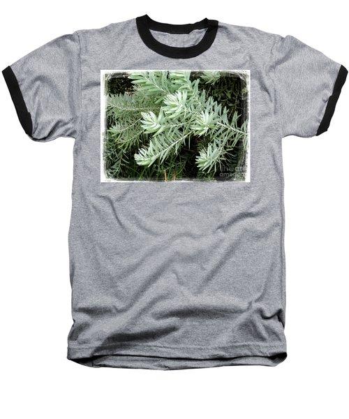Gentle Leaves Baseball T-Shirt