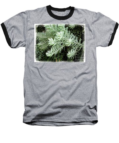 Gentle Leaves Baseball T-Shirt