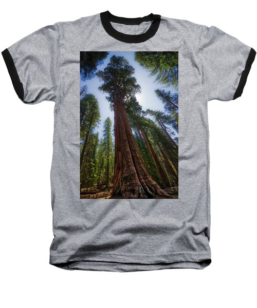Giant Sequoia Tree Baseball T-Shirt