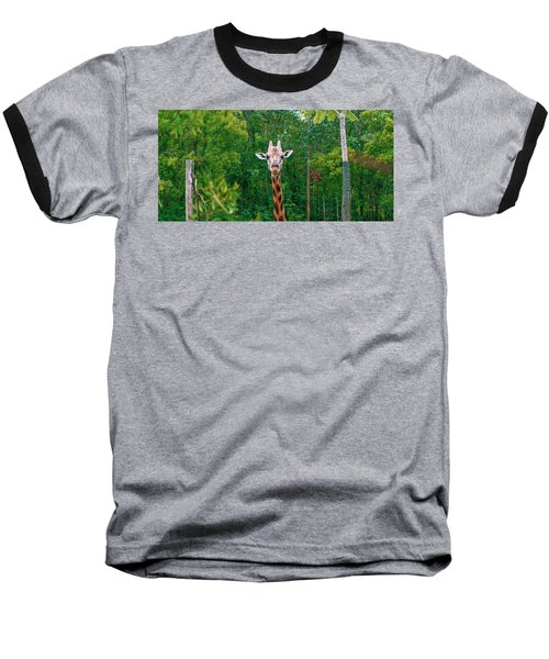 Giraffe Looking For Food During The Daytime. Baseball T-Shirt