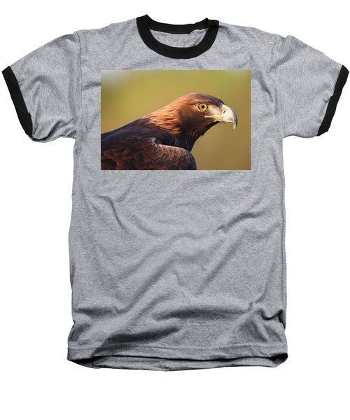 Golden Eagle 5151806 Baseball T-Shirt
