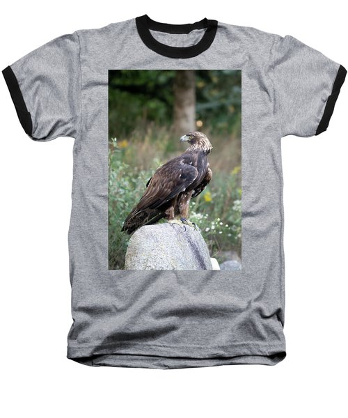 Golden Eagle On Rock 92515 Baseball T-Shirt