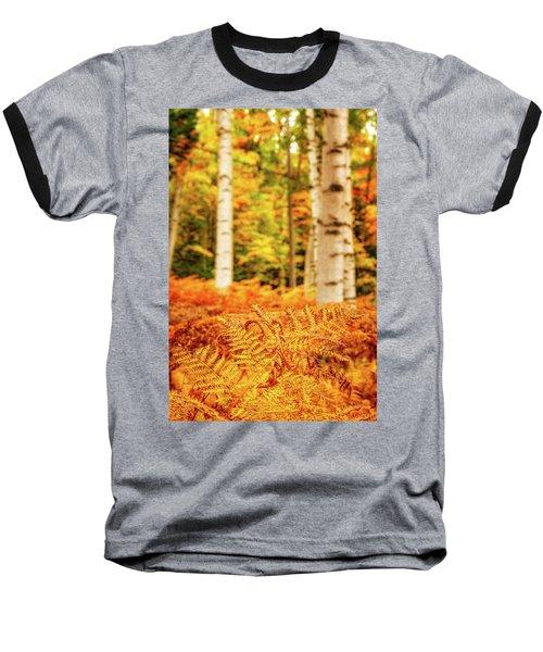 Golden Ferns In The Birch Glade Baseball T-Shirt