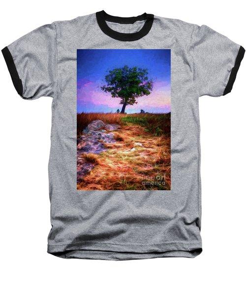 Golden Grasses Of Autumn Ap Baseball T-Shirt