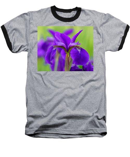 Gorgeous Irises Baseball T-Shirt