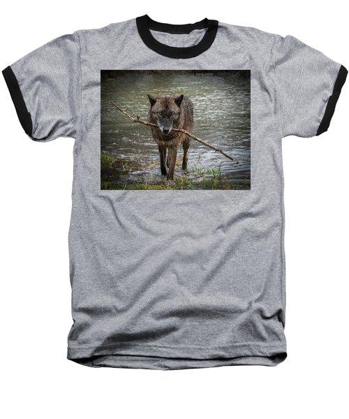Got The Stick Baseball T-Shirt