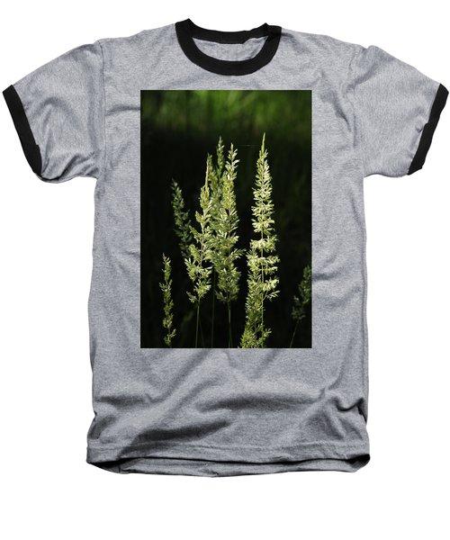 Grasses Baseball T-Shirt