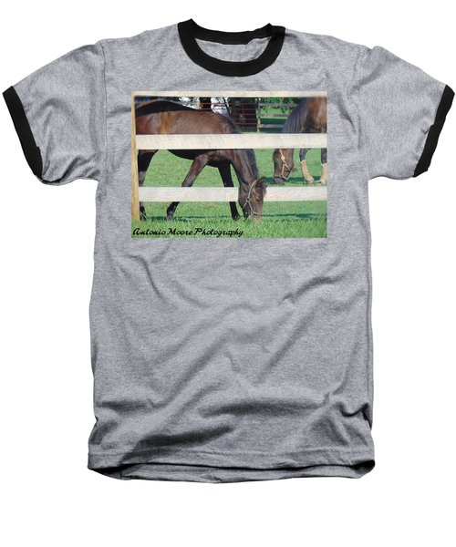 Grazing Beauty Baseball T-Shirt