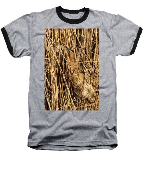 Great Bittern Baseball T-Shirt