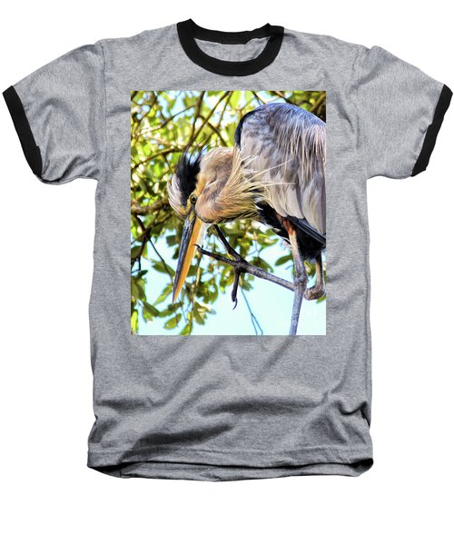 Great Blue Heron Close Up Baseball T-Shirt
