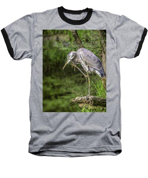 Great Blue Heron Itch Baseball T-Shirt