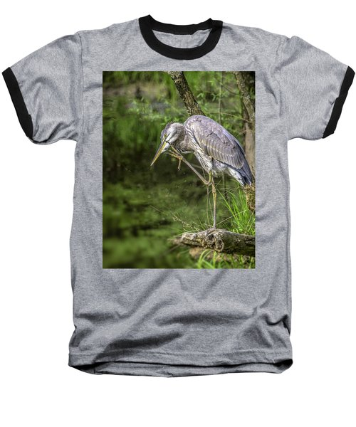 Great Blue Heron Itch Baseball T-Shirt