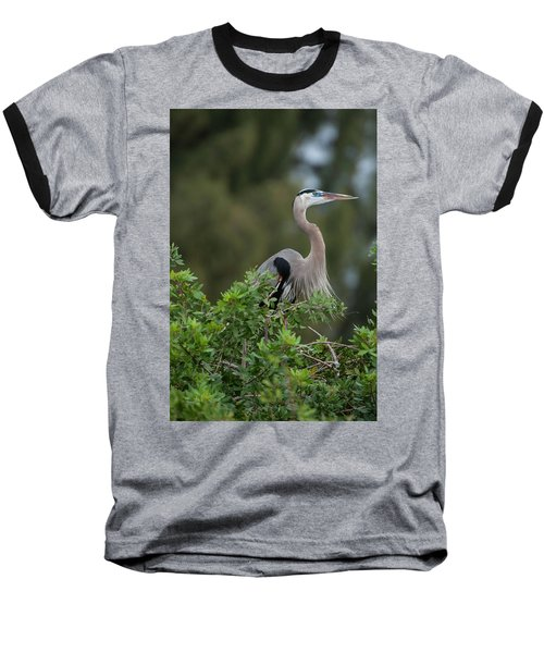 Great Blue Heron Portrait Baseball T-Shirt